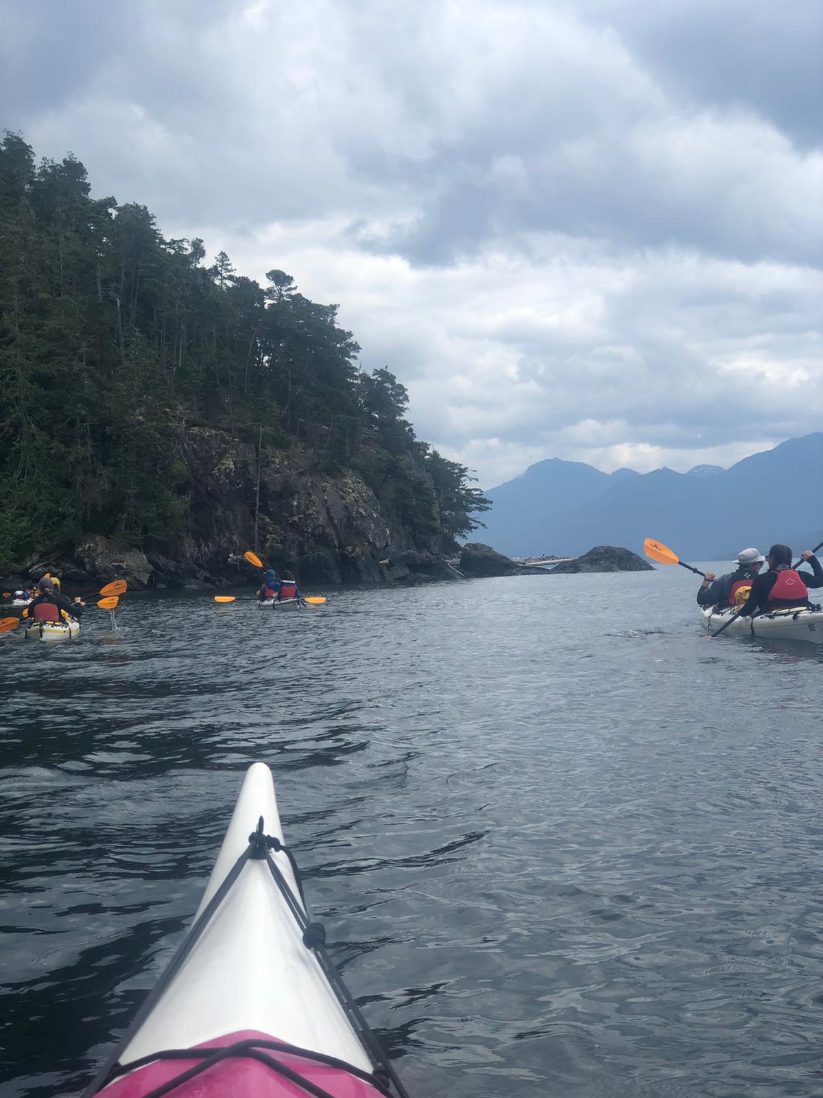 Johnstone Strait Half Day Guided Sea Kayaking Trip