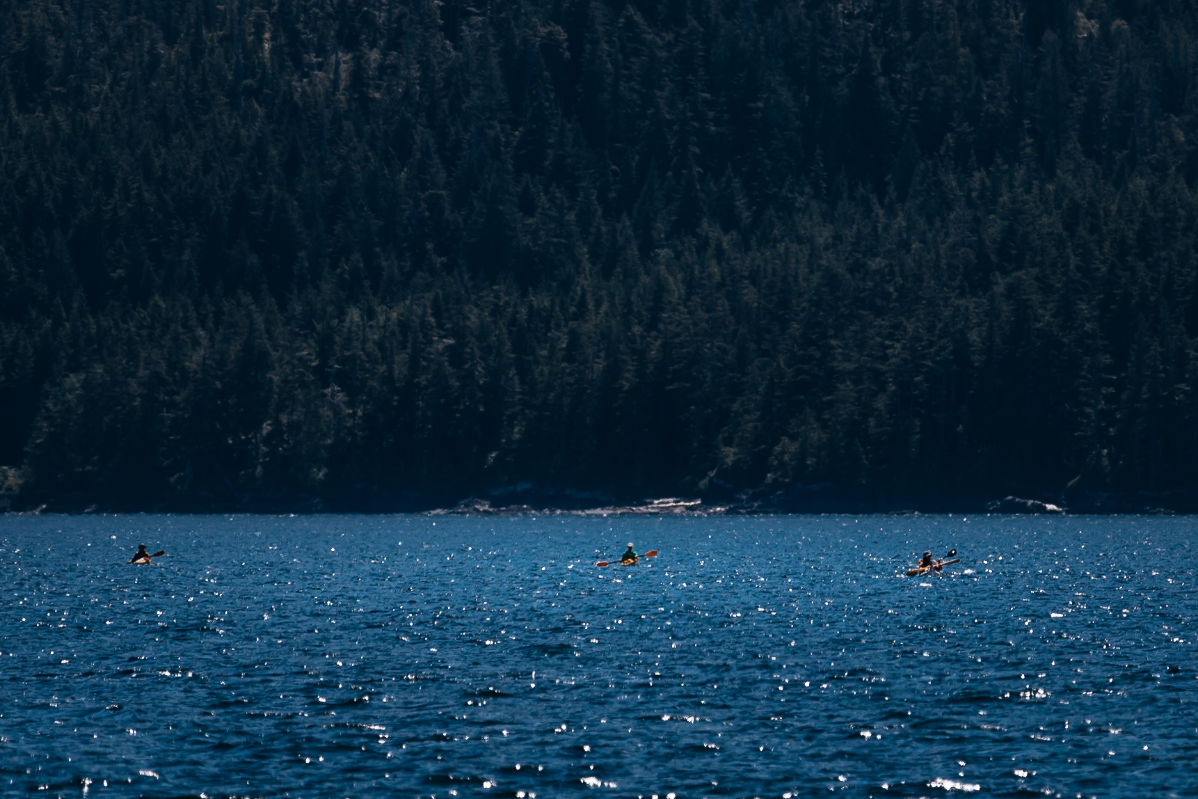 Eight Day Sea Kayaking Expedition
