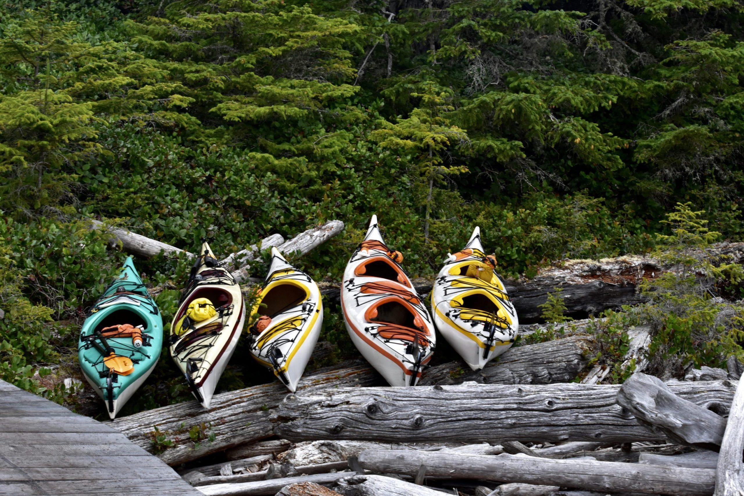 Wildlife Kayak